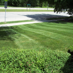 Milwaukee Lawn Care